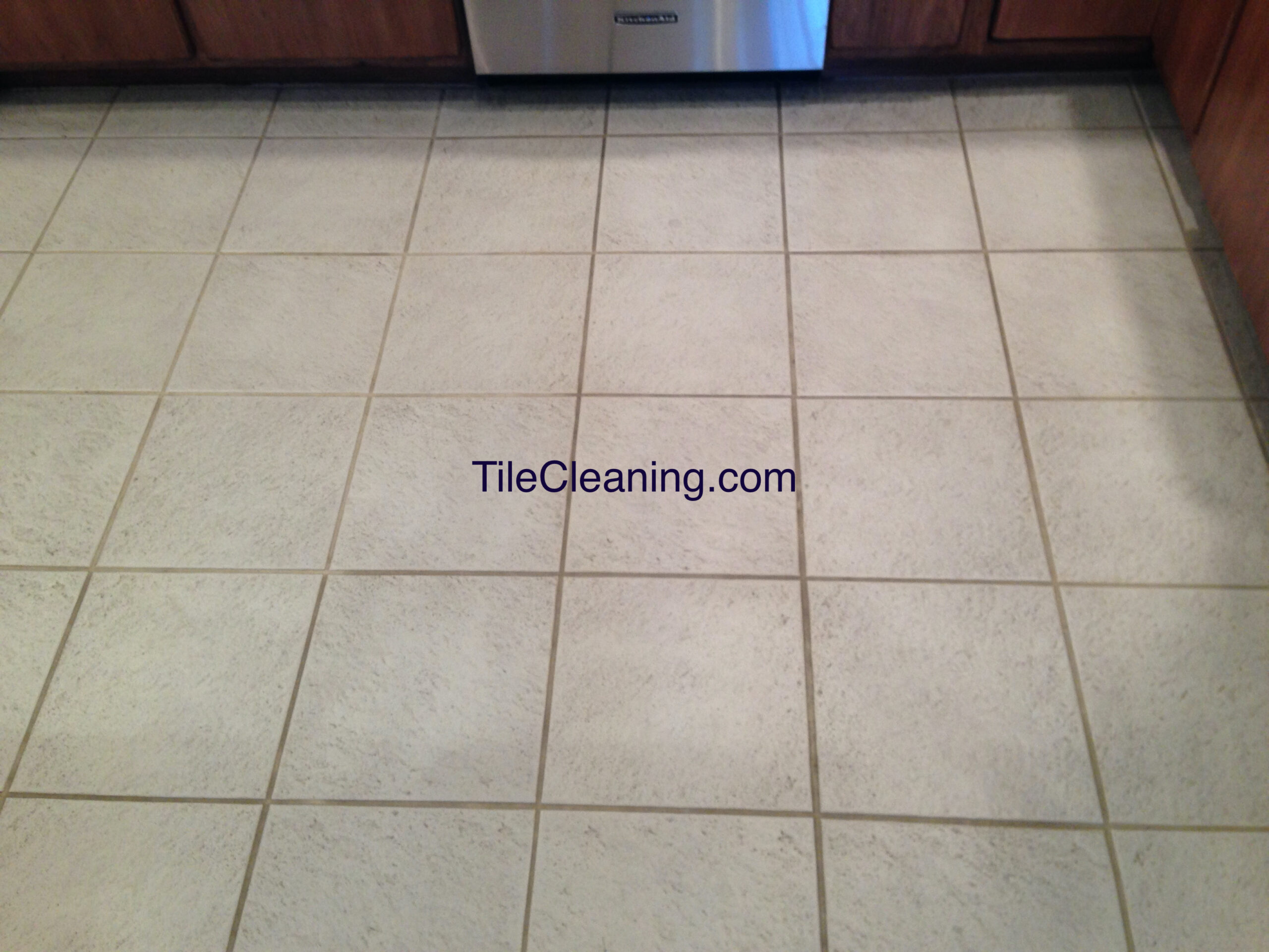 Tile Grout Before Color Staining
